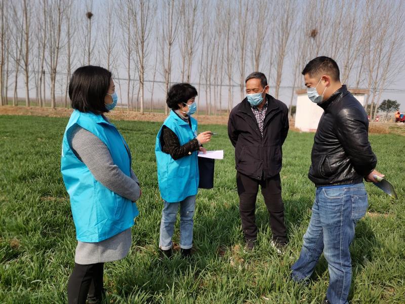 济源农科院志愿者风采:防疫春耕两不误,志愿服务在田间